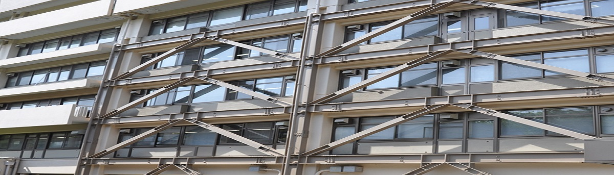 Reinforcement Of Buildings